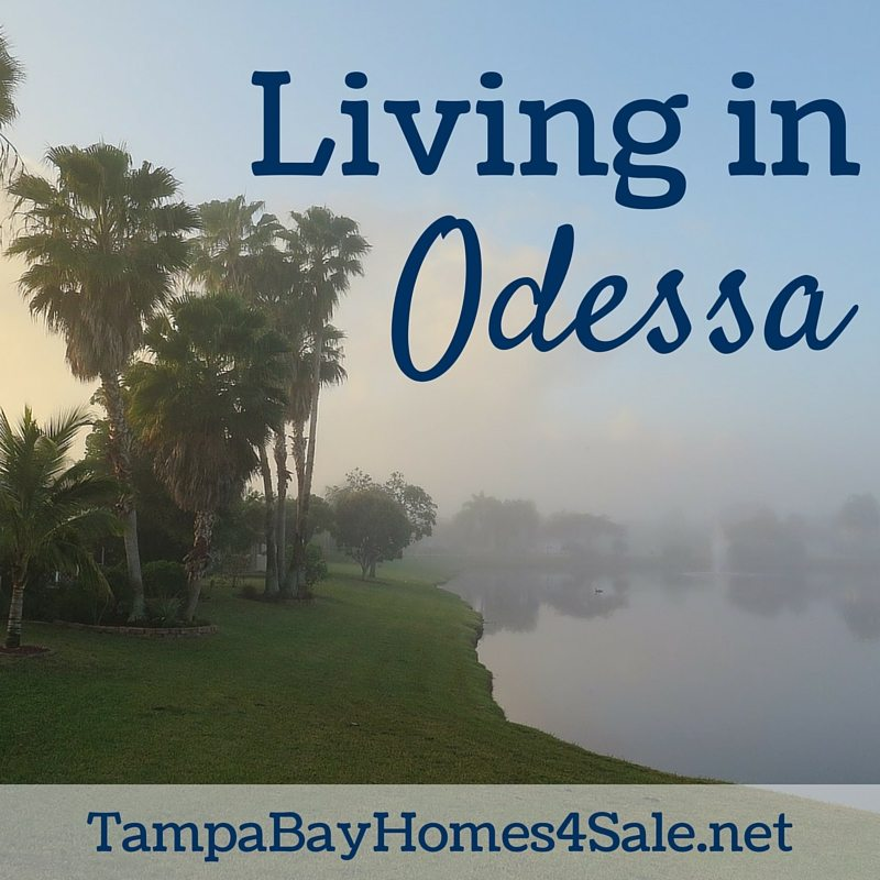 Living in Odessa, FL - Odessa Homes for Sale